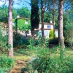 Holidays Haven- Localita' Poggente (Orvieto) $1,400,000.00